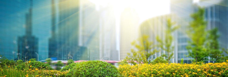 Een aantal gebouwen gevangen door zonnestralen met een groene tuin op de voorgrond