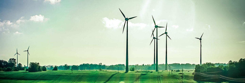 Een groen veld, blauwe lucht een stralende zon met in het veld windmolens.